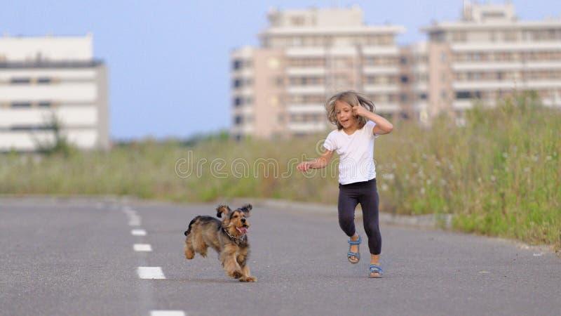 Flicka som jagar hennes valp royaltyfri foto