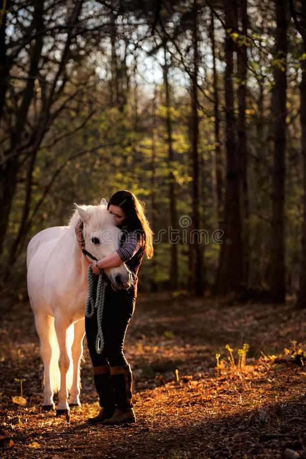 Flicka som kelar den vita hästen i trän arkivbild