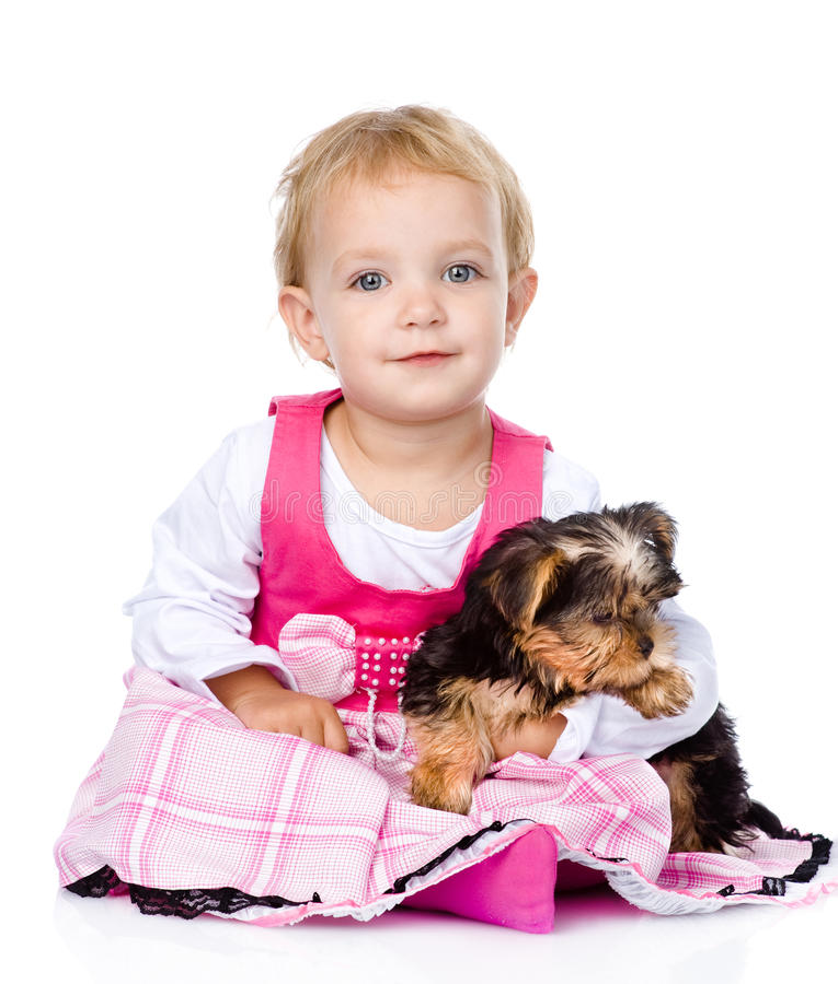 flicka som kramar den små valpen På vitbakgrund fotografering för bildbyråer