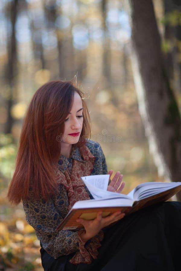 Flicka som läser en bok royaltyfri bild