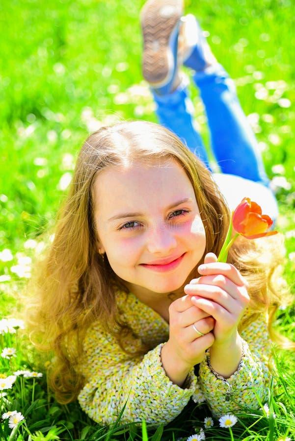 Flicka som ligger på gräs, grassplot på bakgrund Ungdom och bekymmerslöst begrepp Barnet tycker om solig dag för vår, medan ligga royaltyfri fotografi