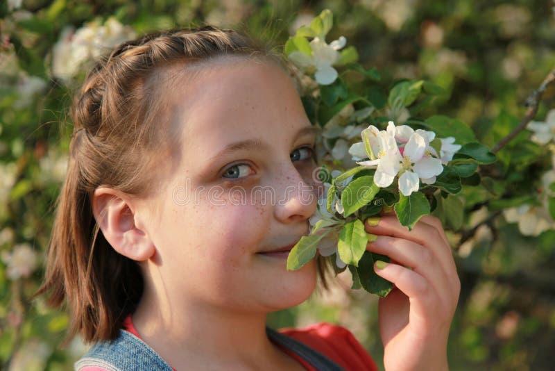 Flicka som luktar blomningarna av ett äppleträd royaltyfria bilder