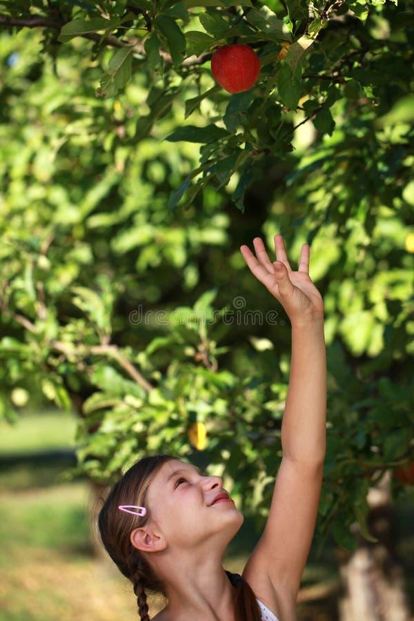 Flicka som ner upp för ett äpple arkivbild