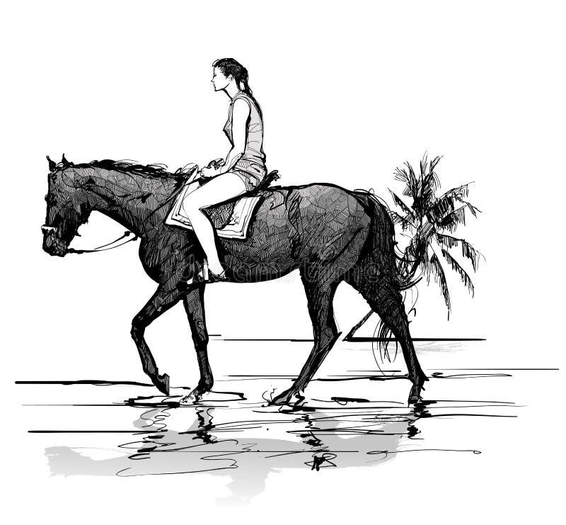 Flicka som rider en häst på stranden stock illustrationer