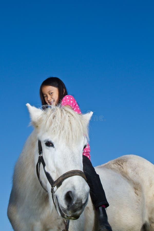 Flicka som rider en icelandic häst arkivbild
