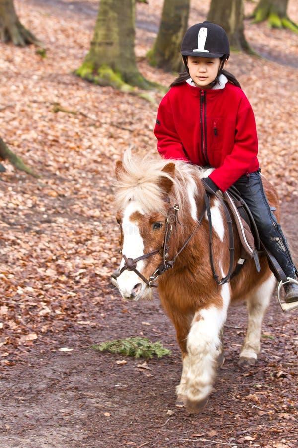Flicka som rider en ponny royaltyfri fotografi