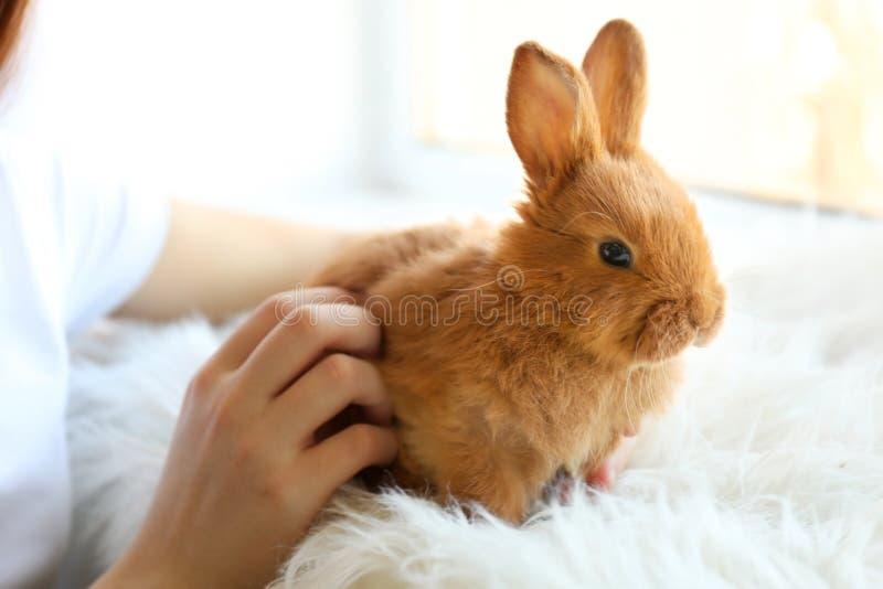 Flicka som rymmer liten kanin, fotografering för bildbyråer