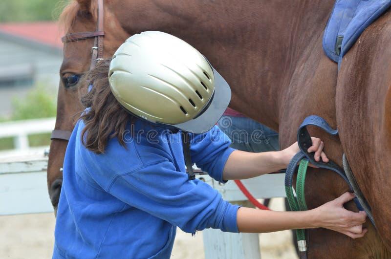 Flicka som sadlar hennes häst på lantgården arkivbild