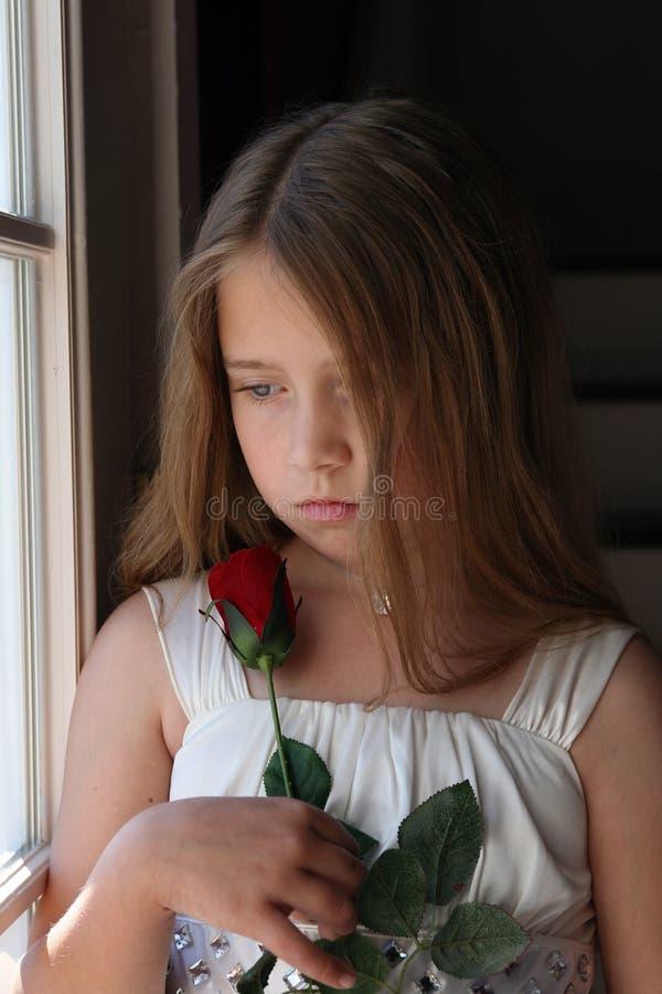 flicka som ser rose barn royaltyfria foton