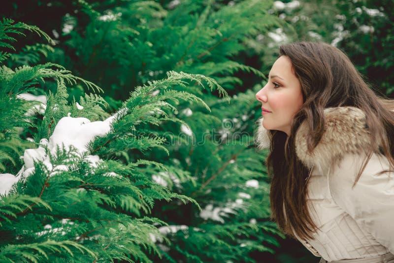 Flicka som ser trädet arkivfoto