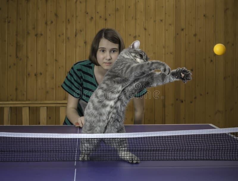 Flicka som spelar bordtennis med en katt royaltyfri foto