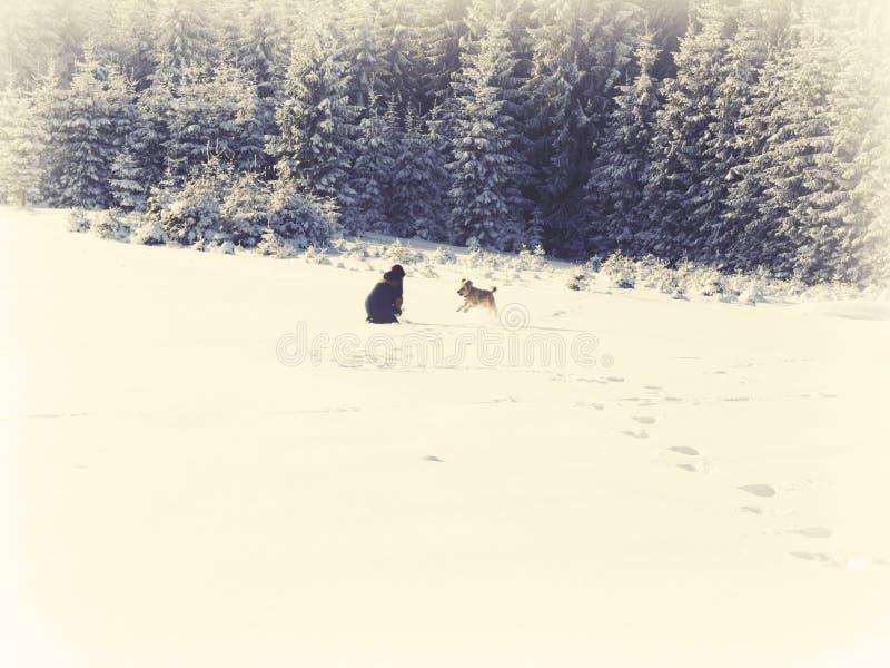 Flicka som spelar i snön med hunden fotografering för bildbyråer