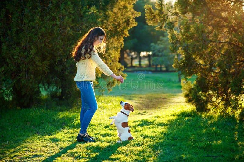 Flicka som spelar med en hund Jack Russell Terrier på naturen arkivbild