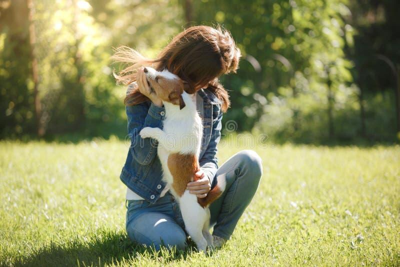 Flicka som spelar med en hundavel Jack Russell Terrier på gräsmattan royaltyfri bild