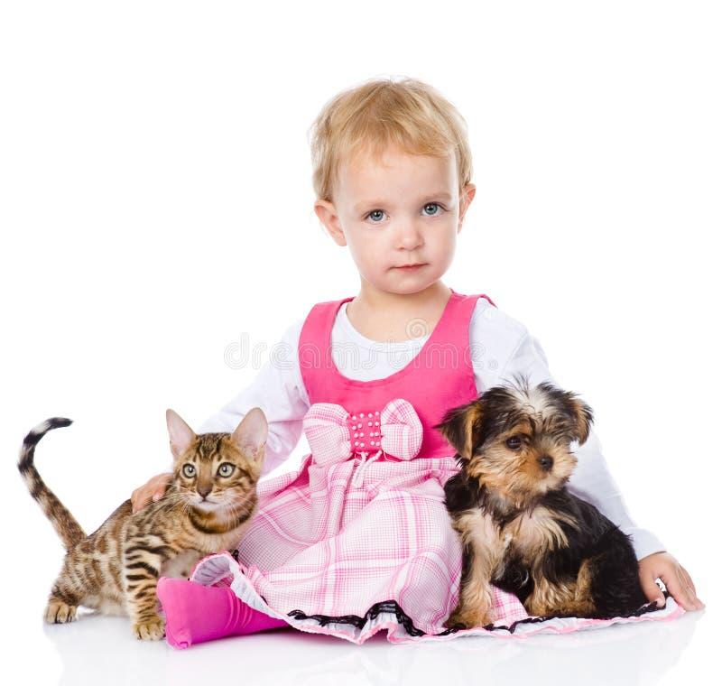 Flicka som spelar med husdjur - hund och katt se kameran isolate royaltyfria bilder