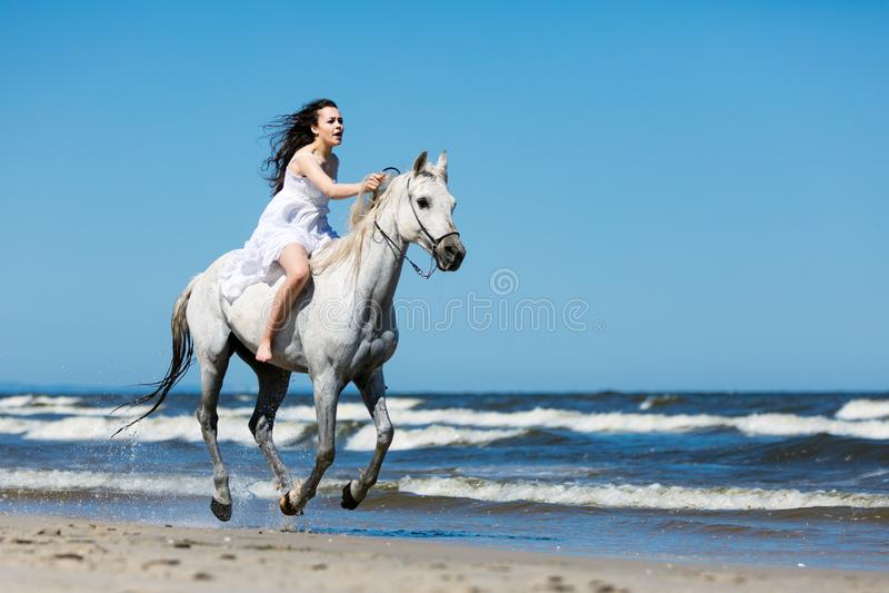 Flicka som stormar till och med stranden på en vit häst royaltyfri fotografi
