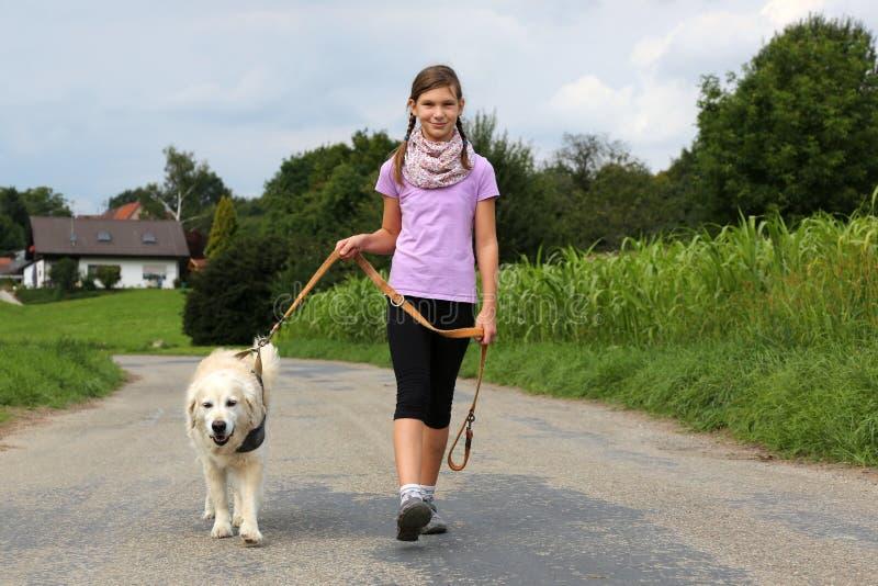 Flicka som tar en hund för en gå arkivbild
