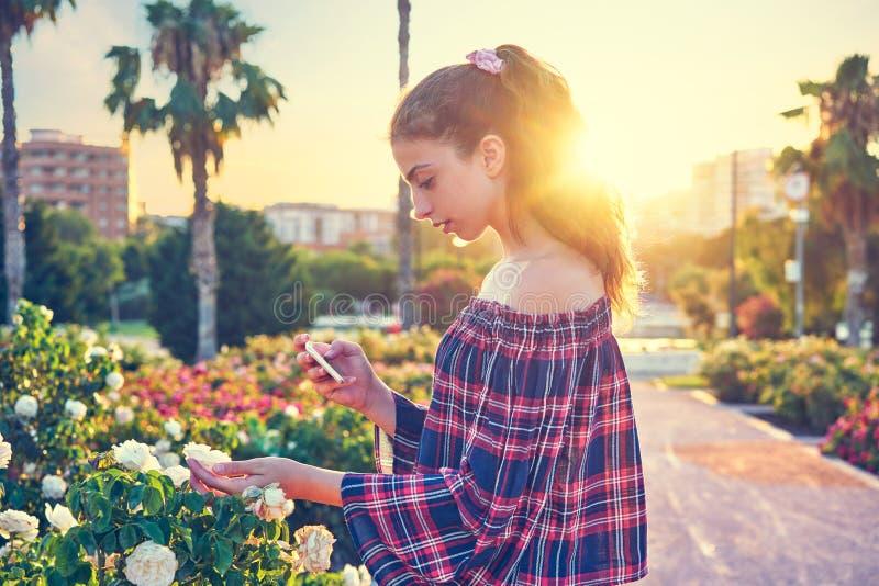 Flicka som tar smartphonefotoet till rosblomman royaltyfri fotografi