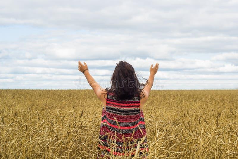 Flickaanseende på vetefält arkivbilder
