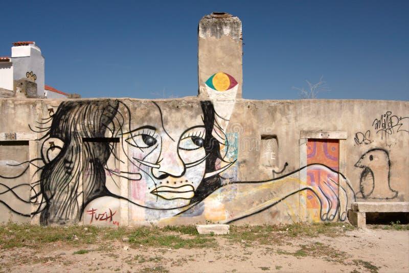 flickagrafittilisbon portugal krigare arkivfoton