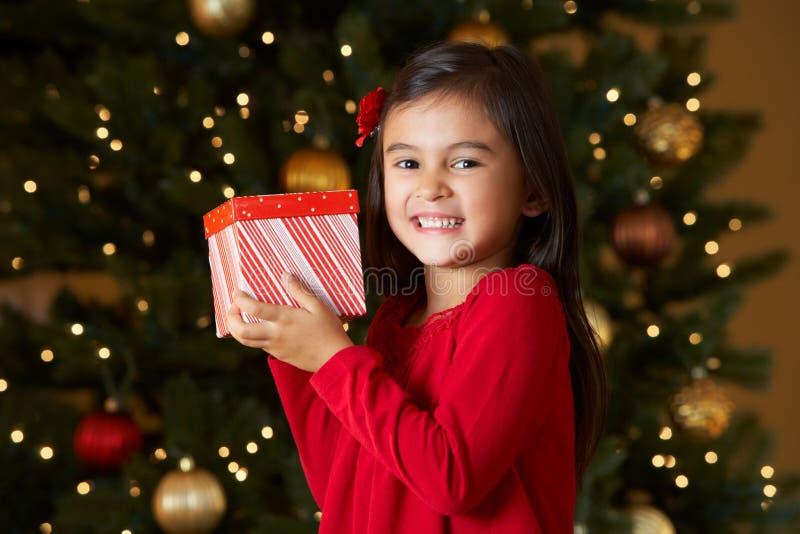 FlickaHoldingjulklapp framme av treen arkivfoton
