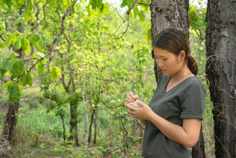 Flickan är att stå som tar anmärkningar i en liten anmärkningsbok i den gröna skogen royaltyfria foton