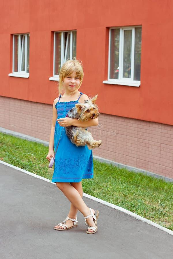 Flickan 6 år med den Yorkshire terriern i henne armar near höghus arkivbilder