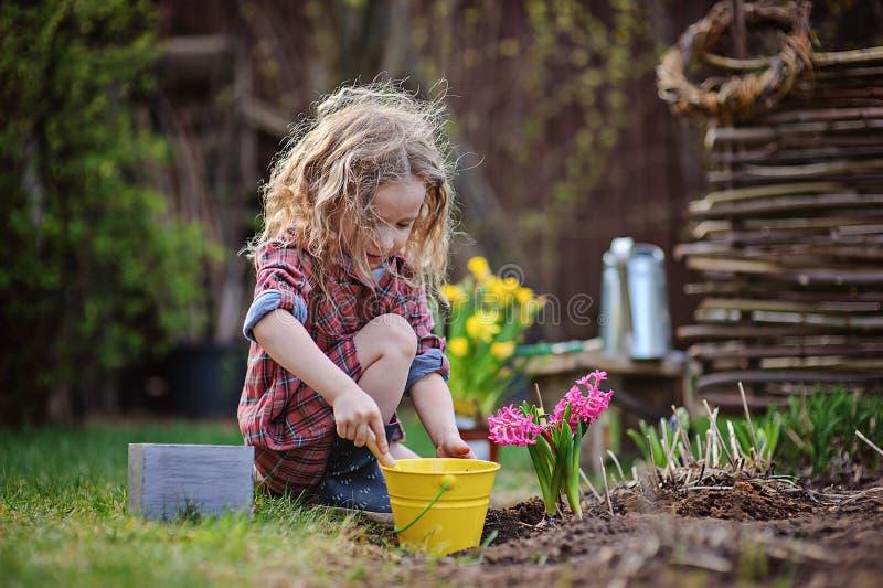 Flickan för det härliga barnet i vårträdgårdlekar och planterahyacint blommar arkivbilder