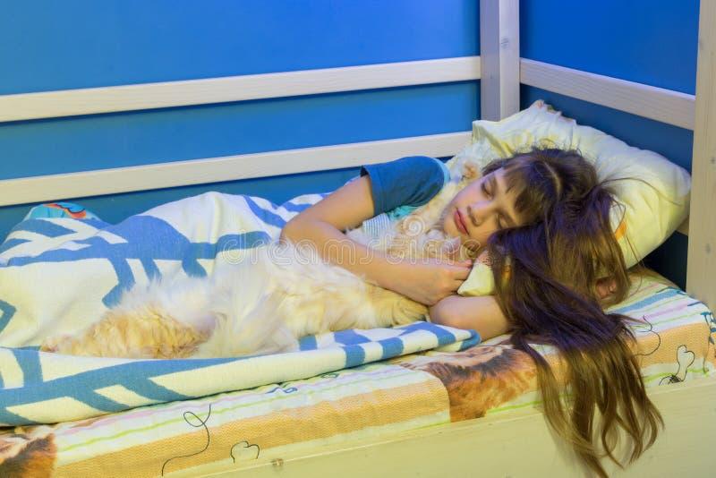 Flickan faller sovande med en fluffig katt arkivbild