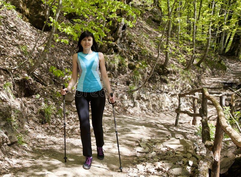 Flickan går längs vägen i skogen av att Scandinavian går royaltyfri fotografi