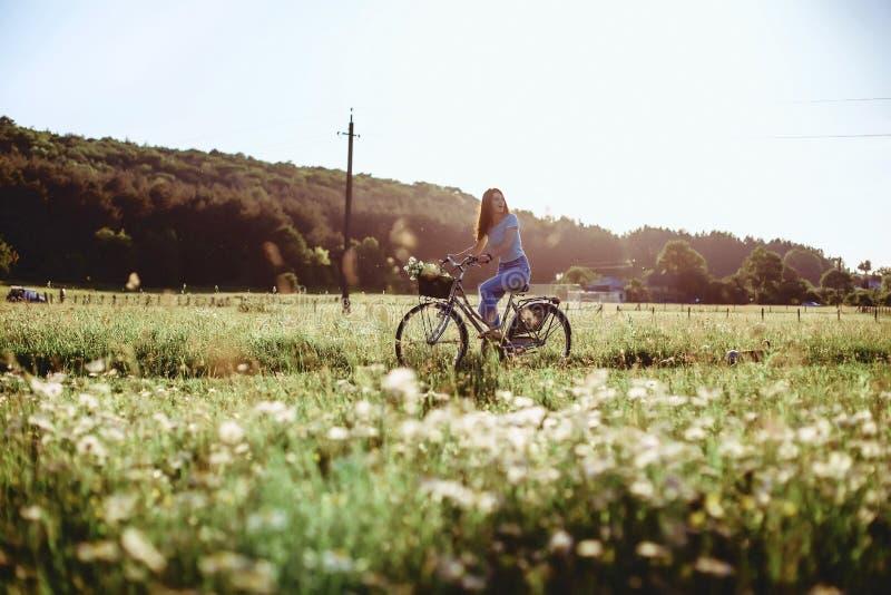 Flickan går med en valp i ett fält i en cykel i baksidan royaltyfri foto