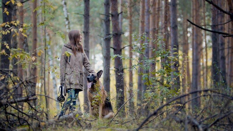 Flickan går med hunden i träna royaltyfri bild