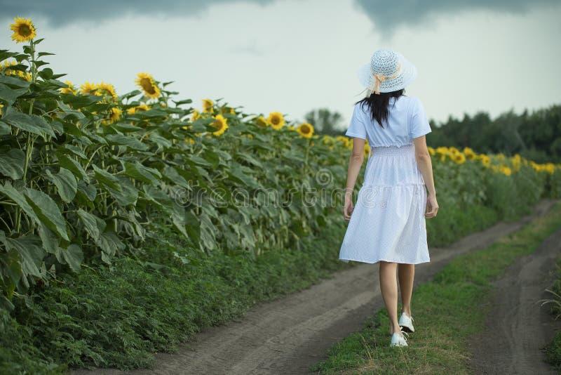 Flickan går på fältet med solrosor fotografering för bildbyråer