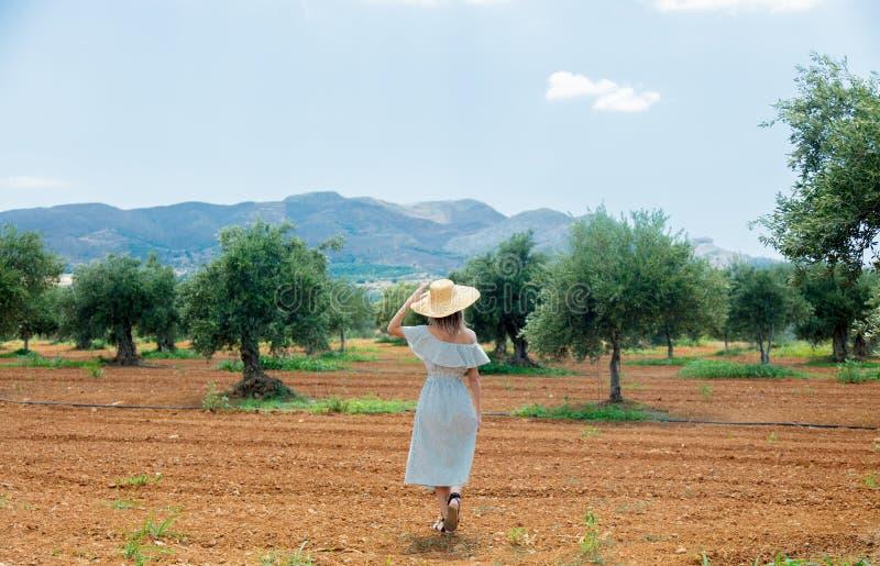 Flickan har en vila i grekisk olivträdgård arkivbild