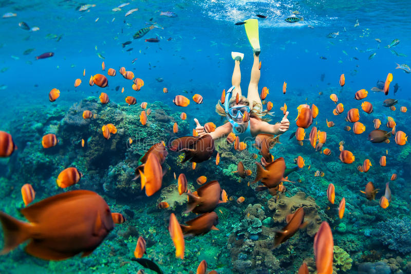 Flickan, i att snorkla maskeringsdyken som är undervattens- med korallreven, fiskar royaltyfria bilder