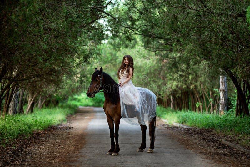 Flickan i en härlig klänning sitter på hästrygg arkivbild