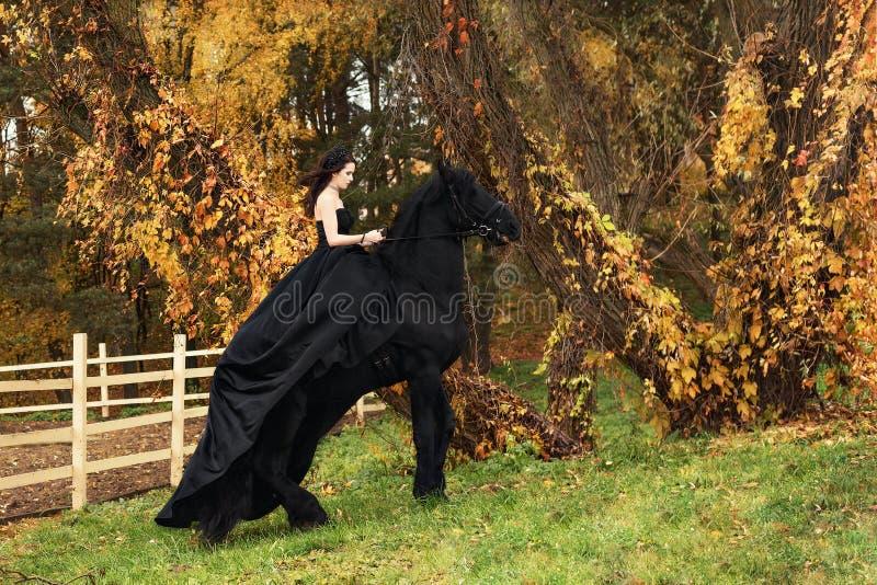 Flickan i en svart aftonklänning hoppar på en Friesianhäst arkivbilder
