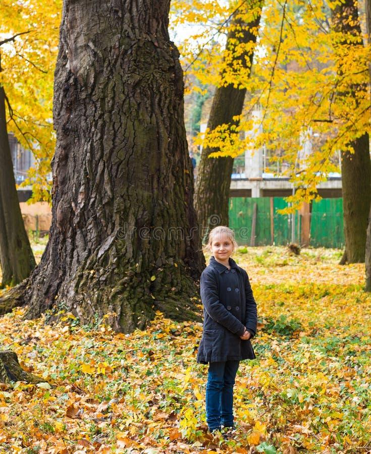 Flickan i höst parkerar royaltyfri fotografi