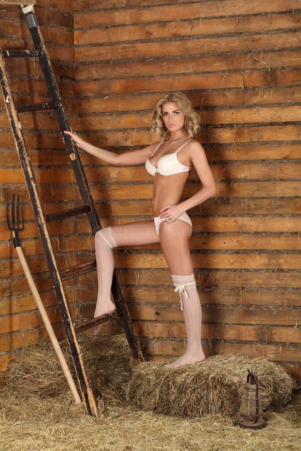 Flickan i ladugården royaltyfri fotografi