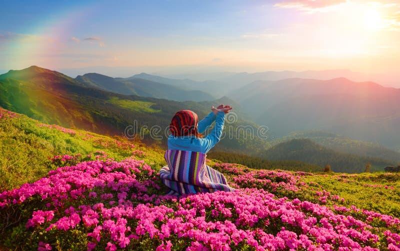 Flickan i randig pläd sitter på gräsmattan bland rosa rhododendroner som håller ögonen på på berglandskapen royaltyfri fotografi
