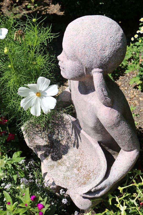 Flickan med blomman royaltyfri bild