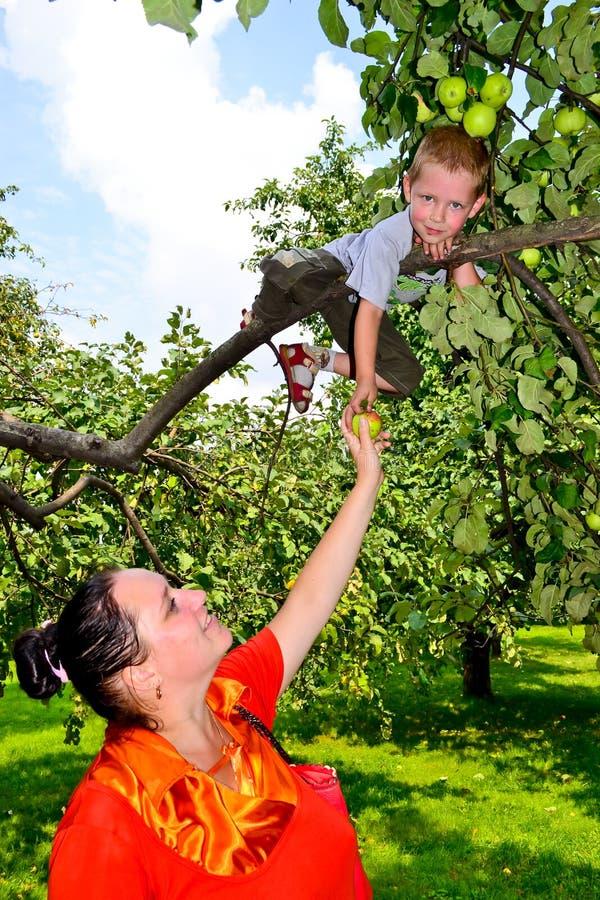 Flickan med ett äpple arkivfoto