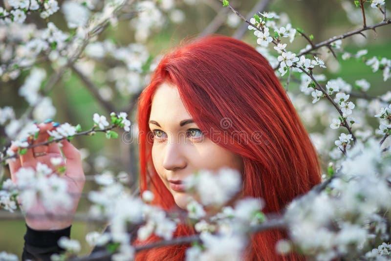 Flickan med r?tt h?r inhalerar doften av blommorna av tr?det royaltyfri bild