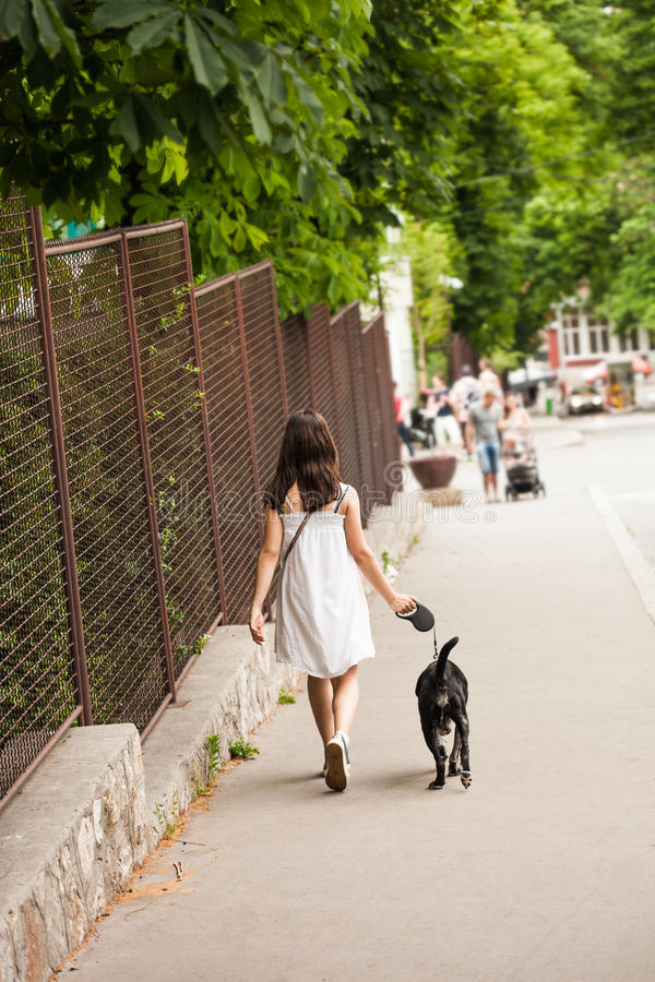 Flickan och hunden går in arkivbilder