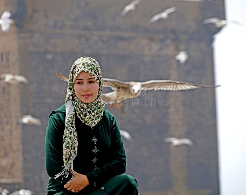 Flickan och seagullsna av Essaouira arkivbild