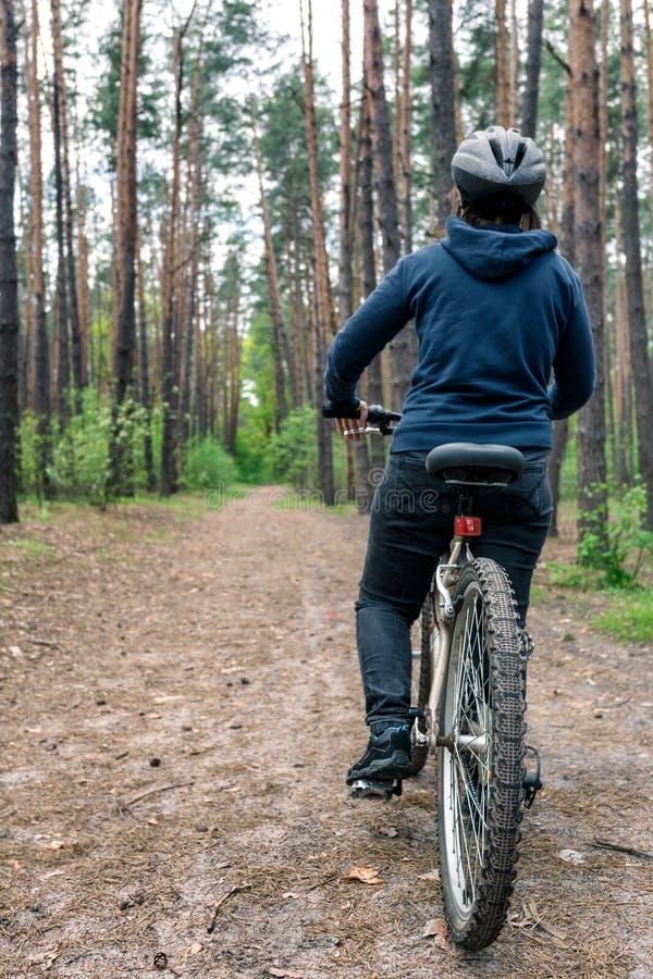 Flickan på cykeln rider på vägen i barrskog royaltyfria bilder