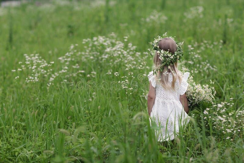 Flickan p? g?r p? en ljus sommardag St?ende av lite flickan med en krans av kamomillar p? hennes huvud arkivbilder