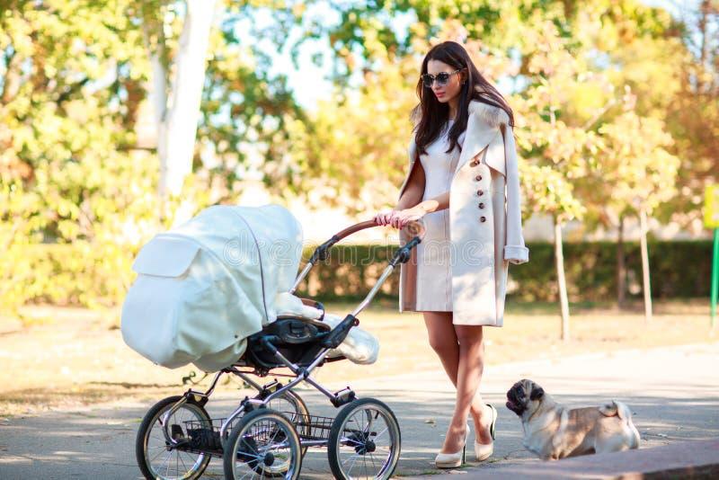Flickan rullar sittvagnen och går hunden arkivfoto