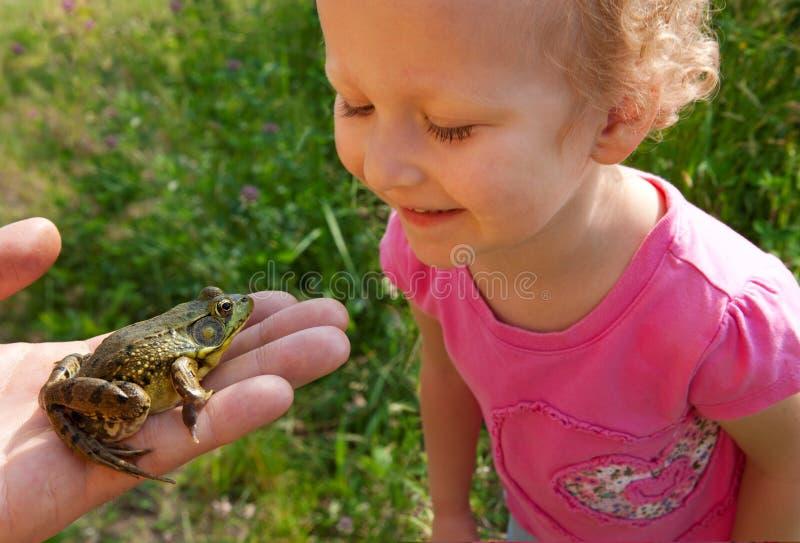 Flickan ser på en groda fotografering för bildbyråer