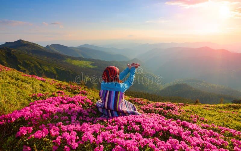 Flickan sitter på gräsmattan som täckas med rosa blommor som håller ögonen på på de höga bergen, himmel med moln och solen i somm arkivbilder